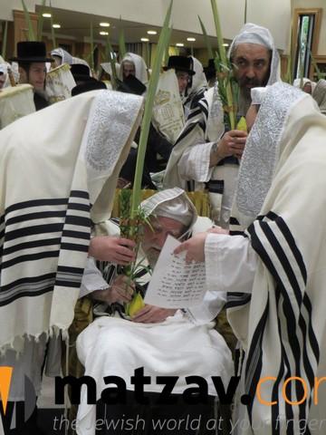 Erlauer Rebbe (78)