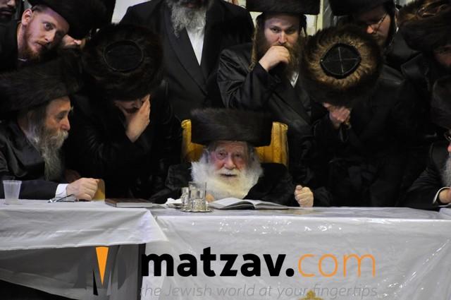Erlauer Rebbe (8)