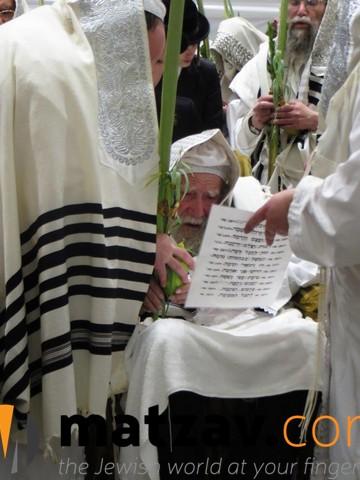 Erlauer Rebbe (80)