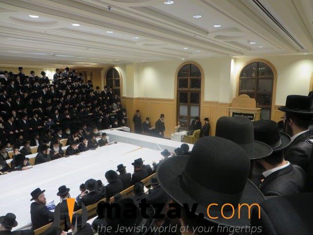 Erlauer Rebbe (81)
