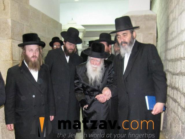Erlauer Rebbe (82)