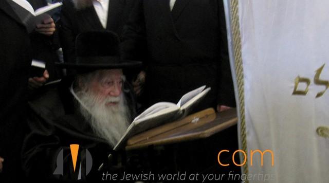 Erlauer Rebbe (88)