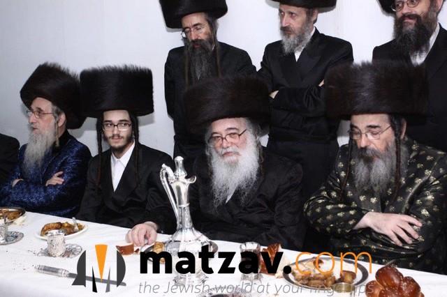 radoshitz (71)