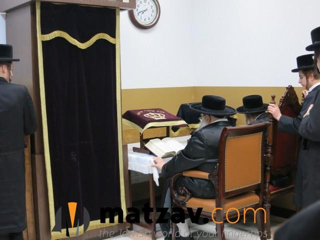 sanzer rebbe (18)
