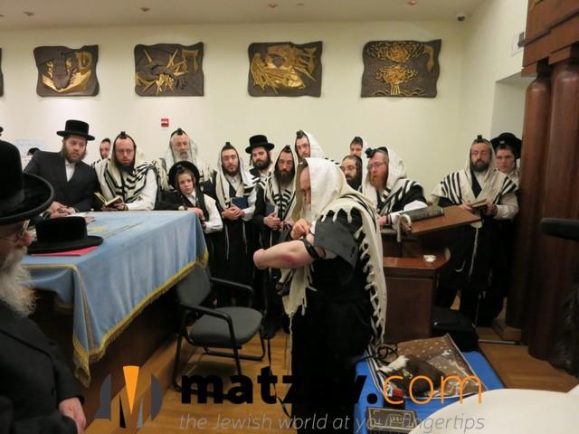 sanzer rebbe (29)