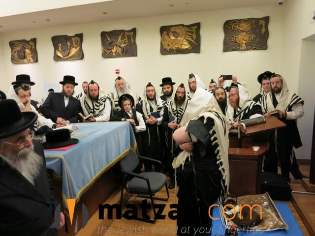 sanzer rebbe (32)