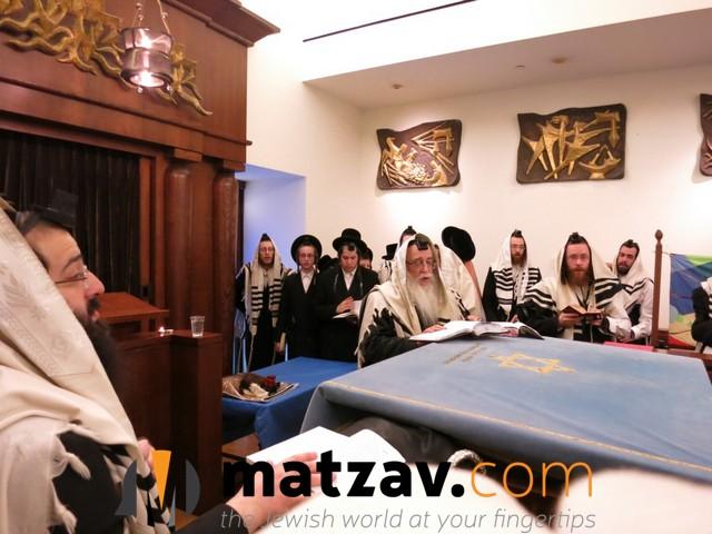 sanzer rebbe (34)
