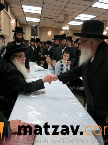 sanzer rebbe (42)