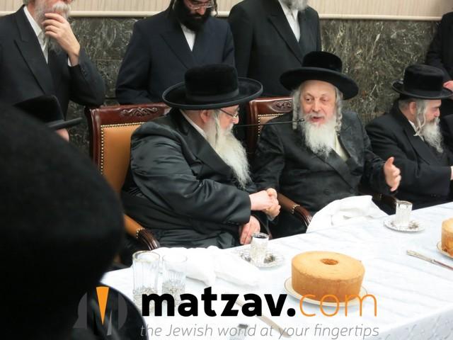 sanzer rebbe (51)