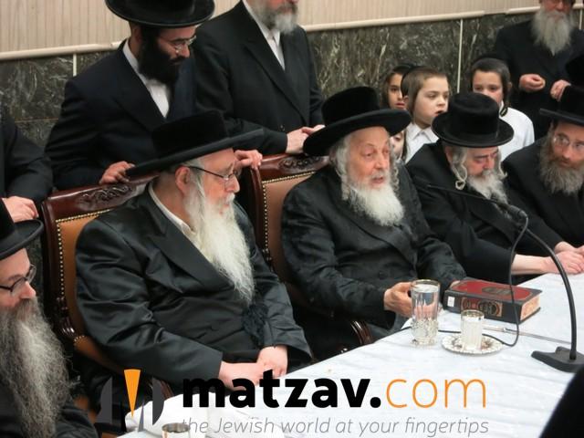 sanzer rebbe (53)