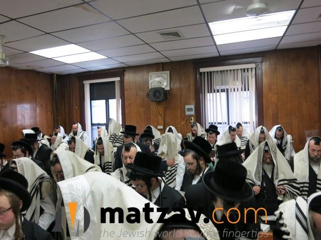 sanzer rebbe (58)
