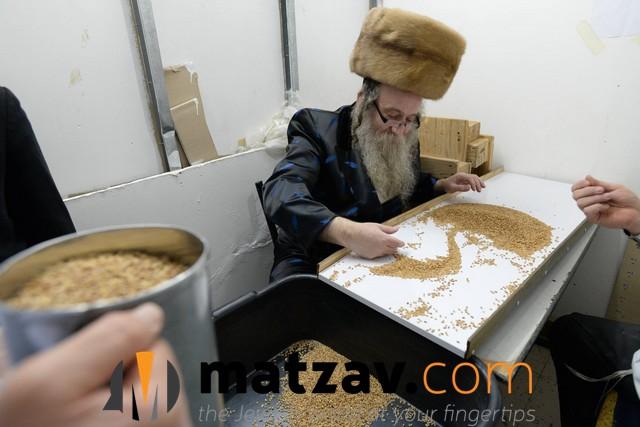 kozhnitzer rebbe (14)