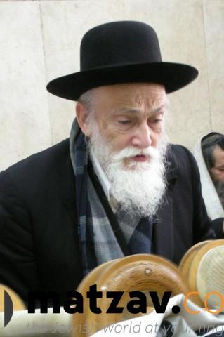 rav meir soloveitchik (48)
