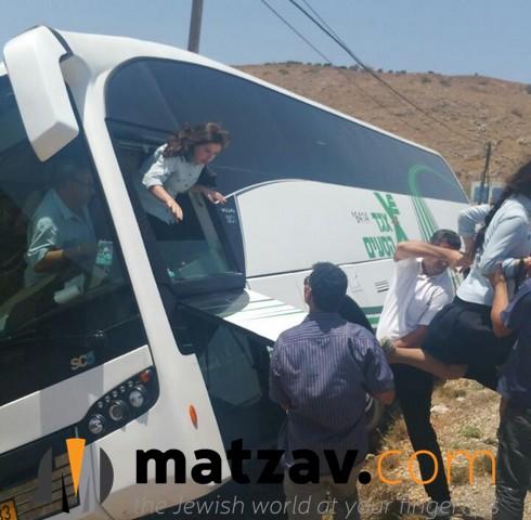 bus (6)