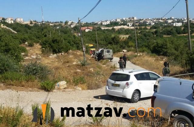hallel yaffa ariel (13)