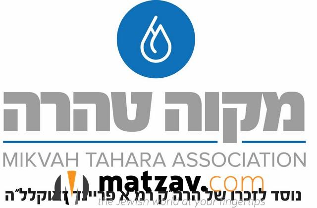 1-logo-MT