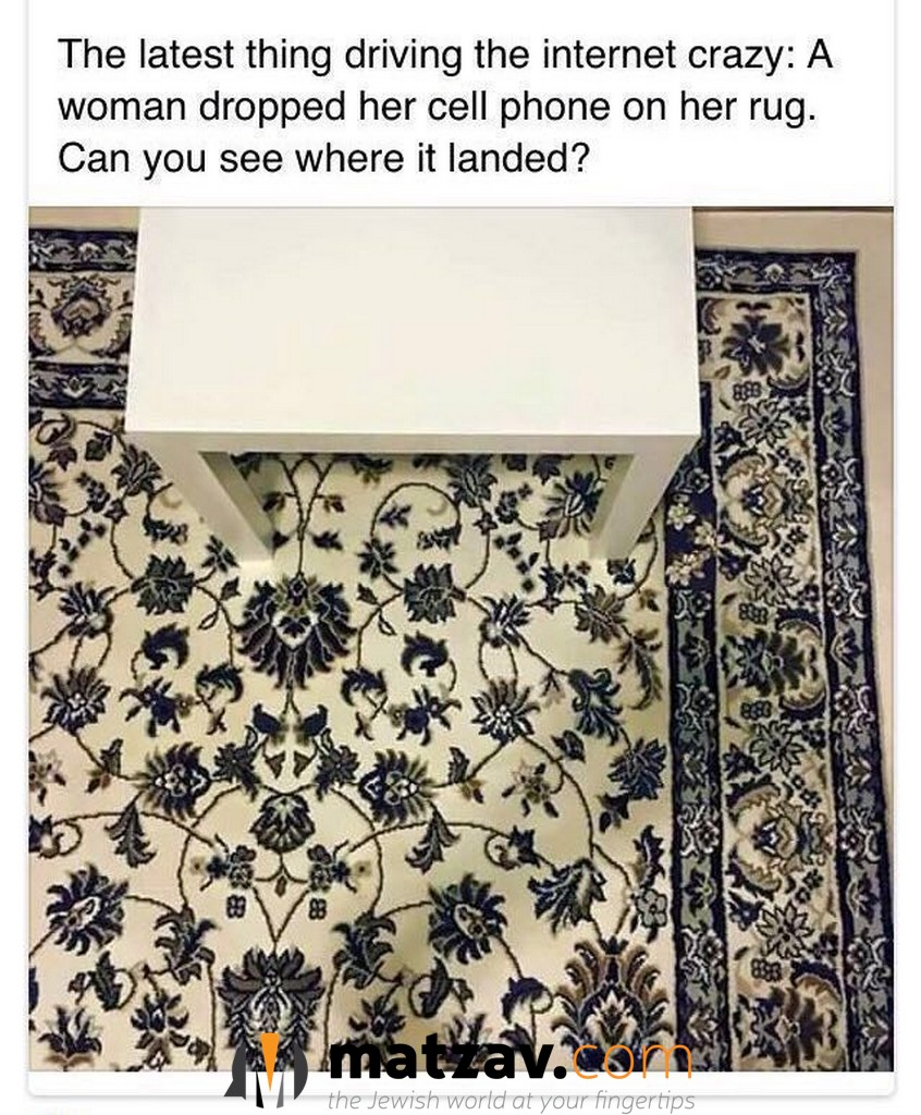Image Result For How To Find Cell Phone On Rug