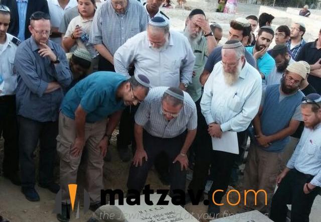 hallel yaffa ariel (12)