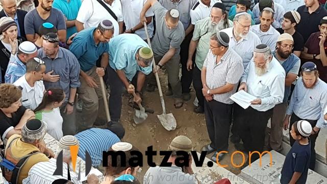 hallel yaffa ariel (4)