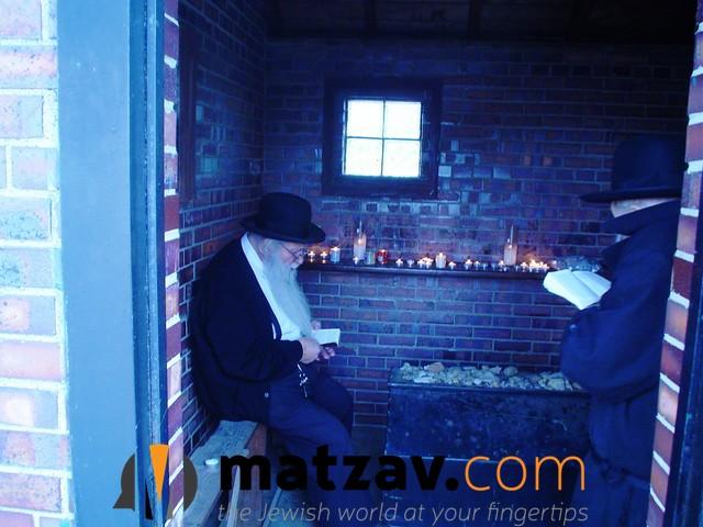 rav shmuel kaufman (13)