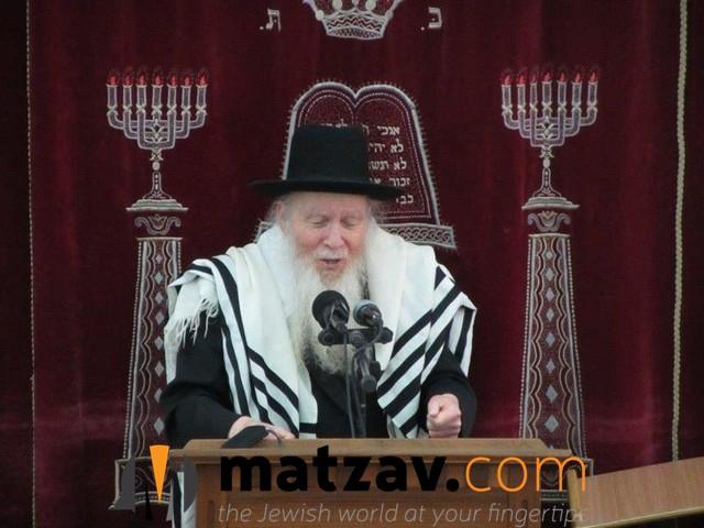 rav aryeh finkel (105)