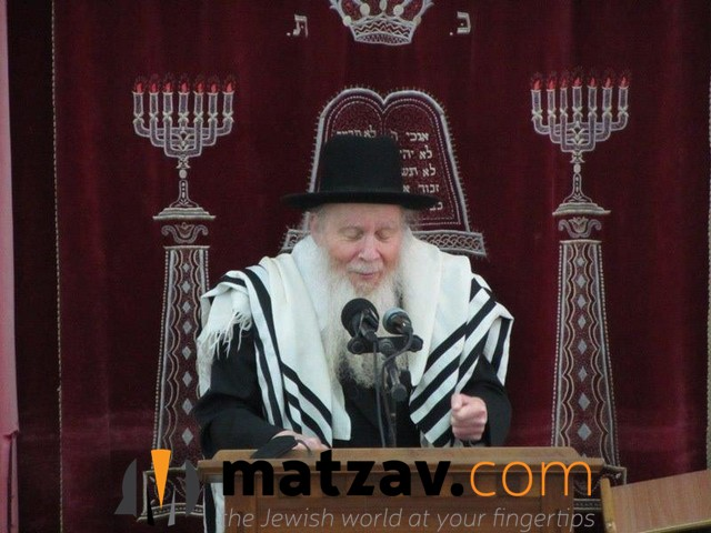 rav aryeh finkel (108)