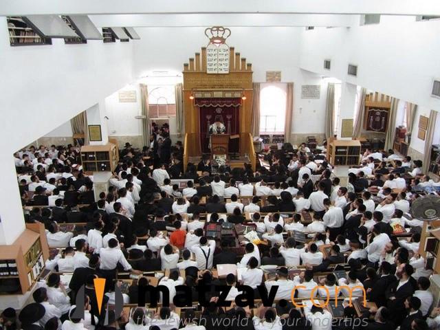 rav aryeh finkel (111)