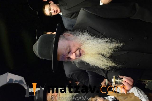 rav aryeh finkel (84)