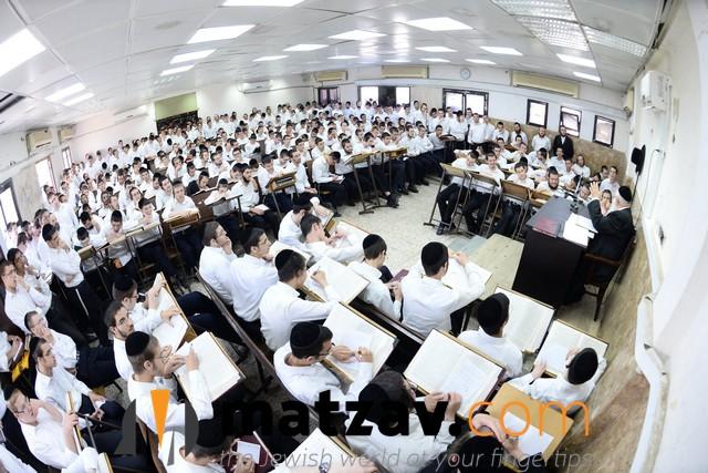 ponovezh yeshiva  (12)