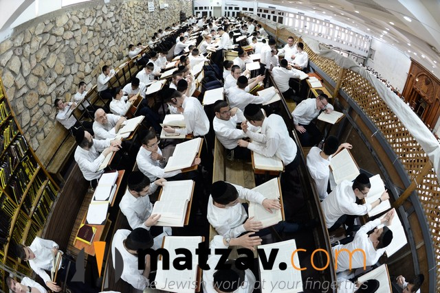 ponovezh yeshiva  (18)