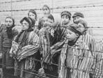 holocaust-survivors