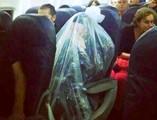 kohein-in-plastic-bag